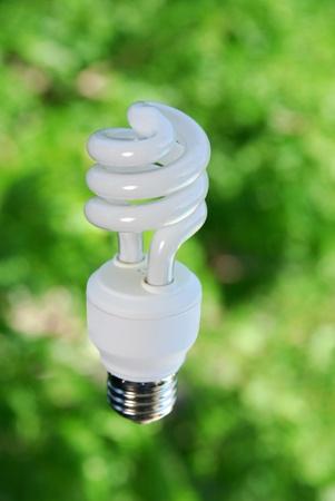 An energy efficient light bulb before a green tree Stock fotó