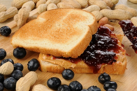Peanut butter and blueberry jelly sandwich photo