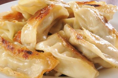 Macro photo of chicken and vegetable potstickers
