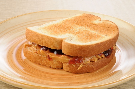 A peanut butter and jelly sandwich on toast photo