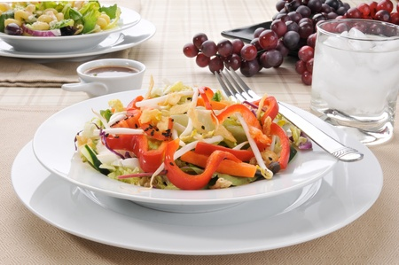 A colorful salad with cucumbers, red bell peppers and bean sprouts Stock Photo - 12268092