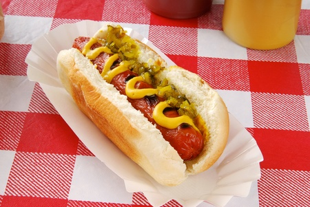 dog summer: A hot dog with relish on a picnic table