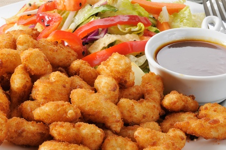 Macro of a pate of breaded popcorn shrimp and a Chinese salad Stock Photo - 12268594