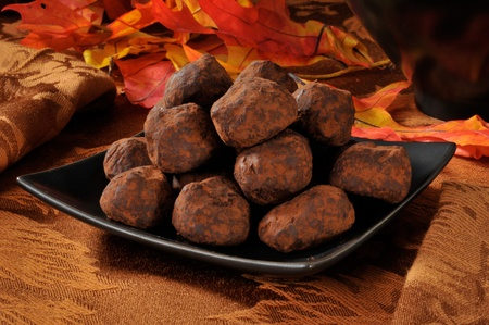 Imported organic caramel truffles dipped in cocoa in an autumn setting Stock Photo - 12675915