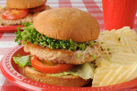 A delicious turkey burger with clover, radish and alfalfa sprouts photo