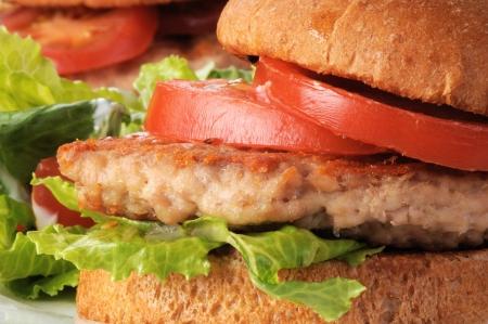 pollo asado: Macro foto de un pollo a la parrilla o una hamburguesa de pavo Foto de archivo