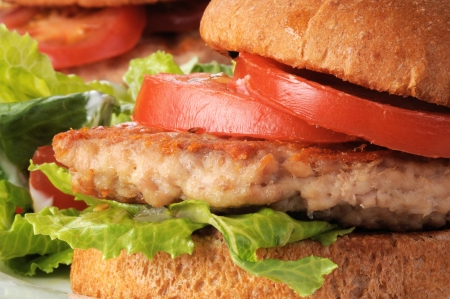 Macro photo of a grilled chicken or turkey burger photo