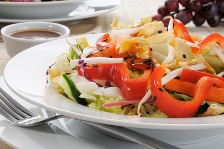 Close up of a Chinese salad with red peppers and bean sprouts photo