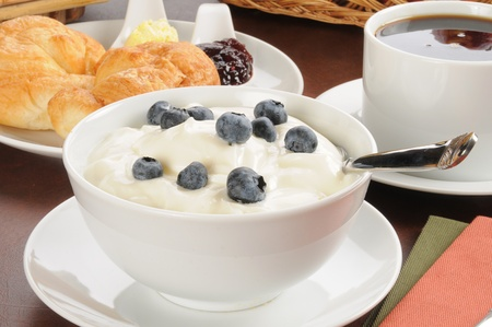 A bowl of yogurt with blueberries