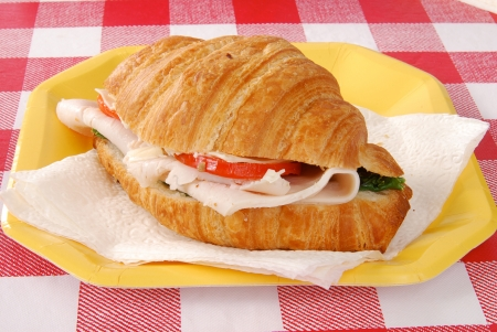 A fresh turkey croissant sandwich on a paper plate Фото со стока - 13604472