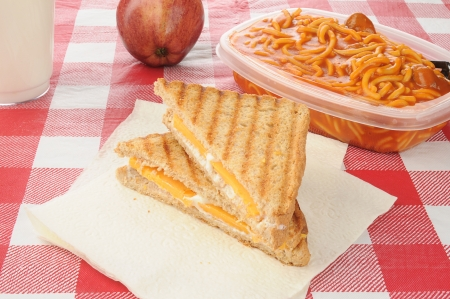 A packed lunch with a cheese sandwich, apple and spaghetti