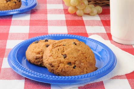 A plastic plate with chocolate chip cookies and a glass of milk on a picnic table