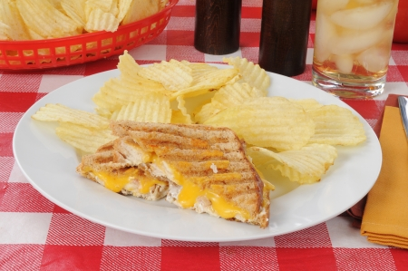 A grilled chicken sandwich with cheddar cheese photo