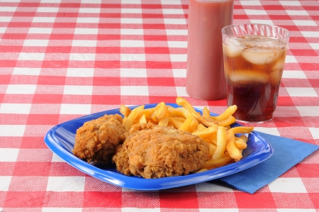 Fried chicken picnic lunch with space for your copy Stock Photo - 14009728
