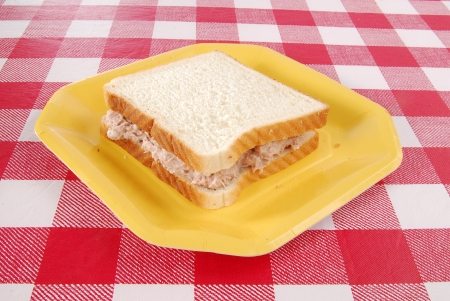 checker plate: A tuna fish sandwich on a paper plate