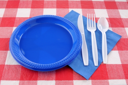 checker plate: A table setting on a picnic table