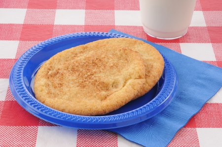A plate of snickerdoodle cookies on a picnic table with milk photo