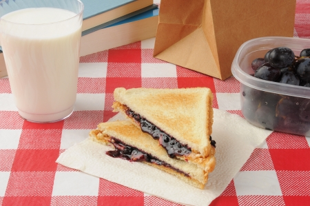 a peanut butter and jelly sandwich with grapes and milk Stock Photo - 14409544