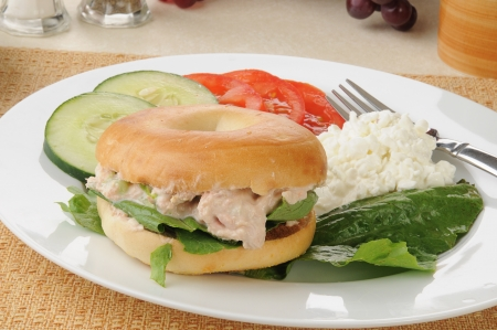 tunafish: Tunafish sandwich on a bagel with cottage cheese and sliced cucumbers and tomatoes Stock Photo
