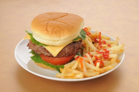 catsup: A thick cheeseburger with fries and catsup