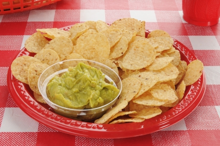 checker plate: Round tortilla chips with guacamole