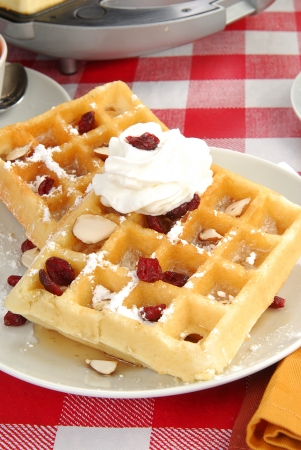 Waffles with whipped cream and dried cranberries
