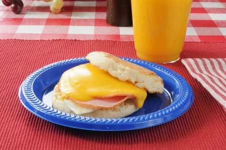 Canadian bacon, egg, and cheeseon an english muffin photo
