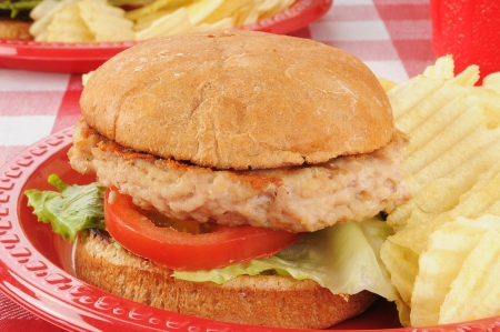a chicken or turkey buger closeup on a picnic table photo