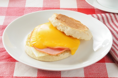 English muffin with canadian bacon, fried egg and cheddar cheese photo