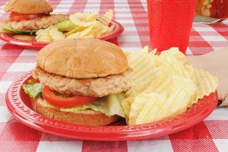 Healthy turkey or chicken burgers on a picnic table  photo