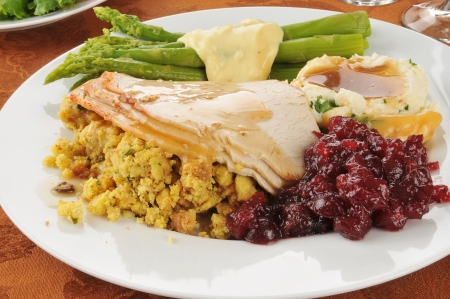 Turkey and dressing with asparagus and cranberry sauce Imagens