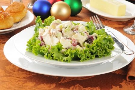 arandanos rojos: Una ensalada Waldorf con adornos de Navidad