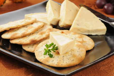 Garlic herb cheese wedges with gourmet crackers, shallow depth of field
