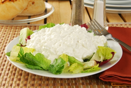 A scoop of cottage cheese on a bed of lettuce Stock Photo