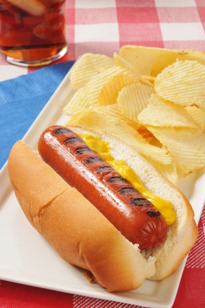 A grilled hot dog with mustard and potato chips