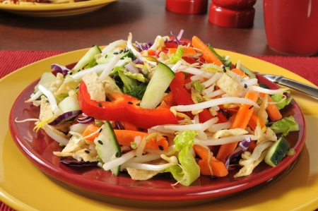 A Chinese chop salad with bean sprouts and fried won ton strips