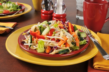 A delicious Chinese salad with fried won ton strips