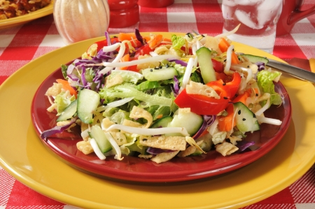 Chinese salad with red peppers, crispy won ton strips, lettuce, carrots and more Stock Photo