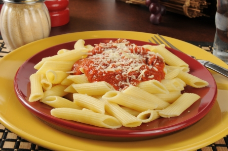 A plate of penne rigata pasta with marinara sauce and parmesan cheese