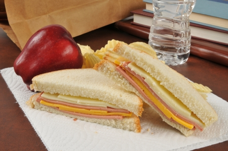 apple sack: A bologna and cheese sandwich sack lunch with an apple, potato chips and bottled water Stock Photo