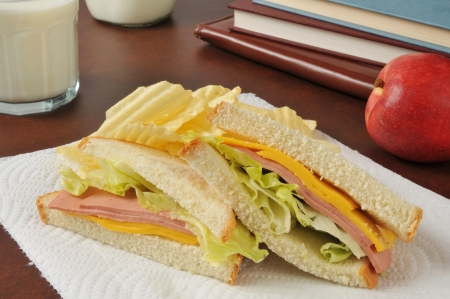 bologna baloney: A bologna and cheese sandwich with potato chips, an apple and milk after school