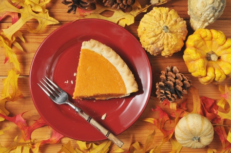 A slice of pumpkin or sweet potato pie in an artistic photo photo