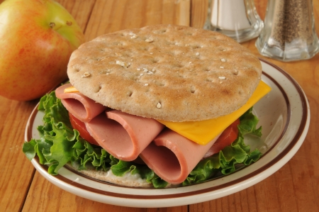 bologna baloney: A bologna and cheese sandwich on thin round sandwich bread