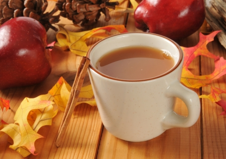 A cup of hot apple cider with cinnamon sticks