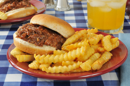 seltzer: A barbecue beef sandwich on a picnic table with an orange spritzer