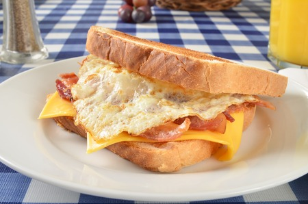 Close up of a bacon, egg and cheese sandwich on a picnic table photo