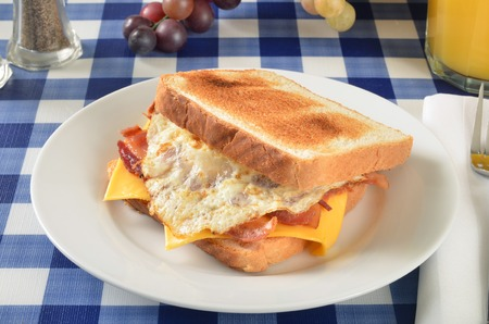 A bacon, egg and cheese sandwich on a picnic table photo