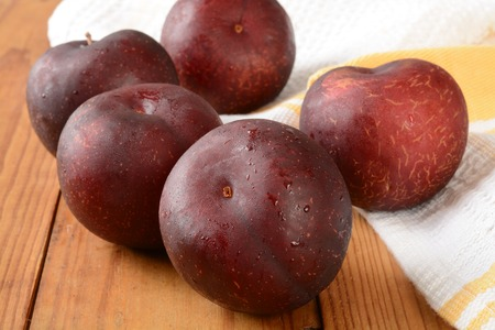 Fresh washed organic plums drying on a rustic wooden counter