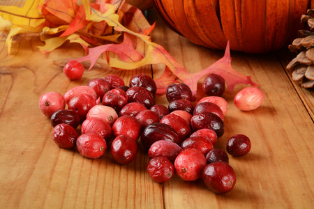 freeze dried: Cranberries on a rustic wooden table with autumn leaves, pine cones and a decorative pumpkin