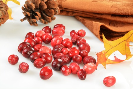 freeze dried: Freeze dried cranberries on a white counter top with autumn leaves